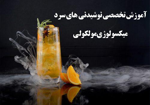 دوره میکسولوژی و میکسولوژی مولکولی در مدرسه میکسولوژی ایران